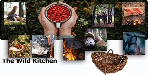 the-wild-kitchen-de banner