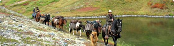 Horsepacks